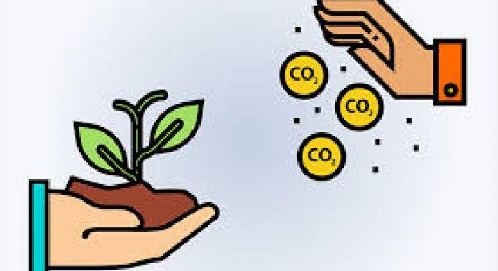 Mercado de crédito de carbono entra na mira de empresas